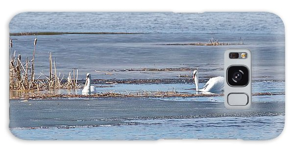 Trumpeter Swans 0933 Galaxy Case by Michael Peychich