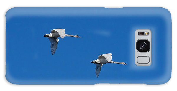 Trumpeter Swans 1725 Galaxy Case by Michael Peychich