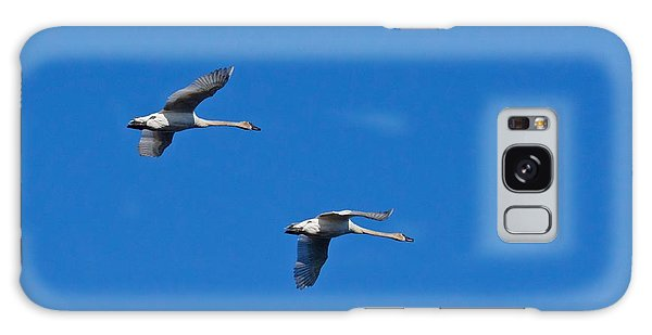 Trumpeter Swans 1726 Galaxy Case by Michael Peychich