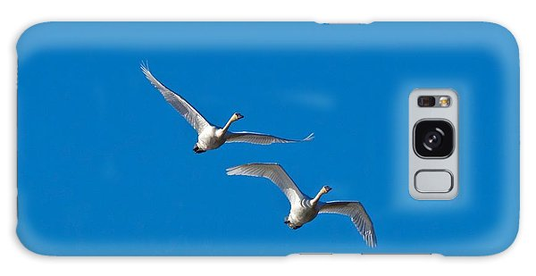Trumpeter Swans 1735 Galaxy Case by Michael Peychich