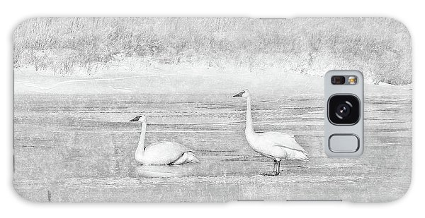 Galaxy Case featuring the photograph Trumpeter Swan's Winter Rest Gray by Jennie Marie Schell