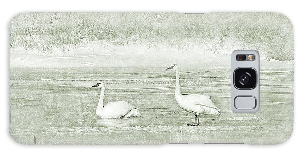Galaxy Case featuring the photograph Trumpeter Swan's Winter Rest Green by Jennie Marie Schell