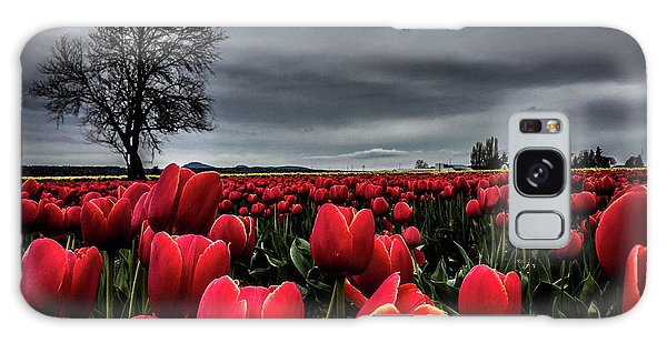 Tulip Fields Galaxy Case