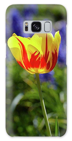 Tulip Flame Galaxy Case