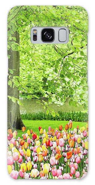 Tulip Garden - Amsterdam Galaxy Case