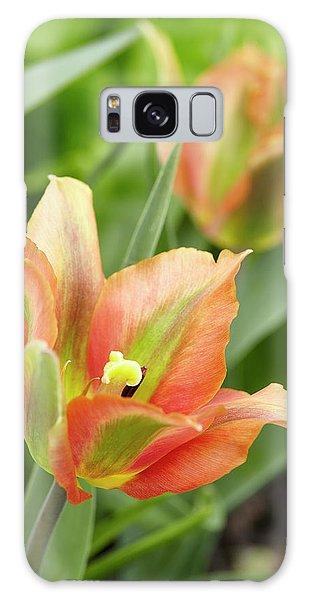 Tulip Galaxy Case