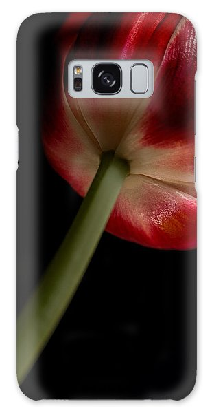 Tulip In Window Light Galaxy Case