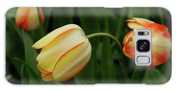 Nodding Tulips Galaxy Case