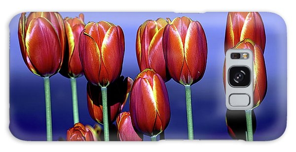 Tulips At Attention Galaxy Case