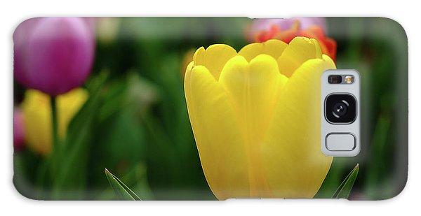 Tulips At Campus Galaxy Case