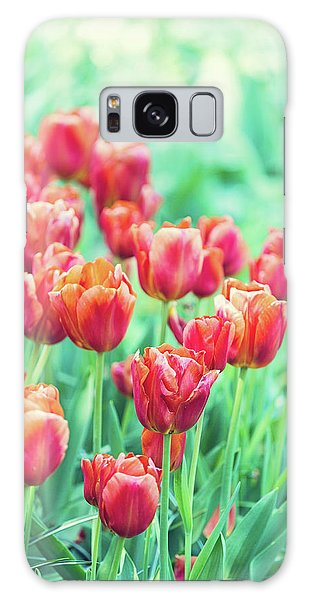 Tulips In Amsterdam Galaxy Case