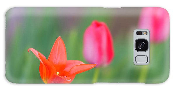 Tulips In My Garden Galaxy Case