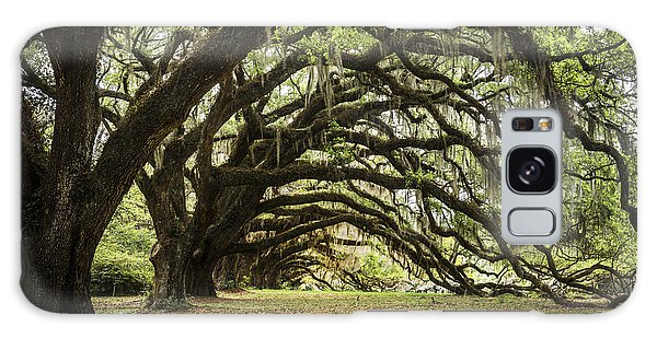 Outdoor Dining Galaxy Case - Tunnel Of Oaks by Jon Glaser