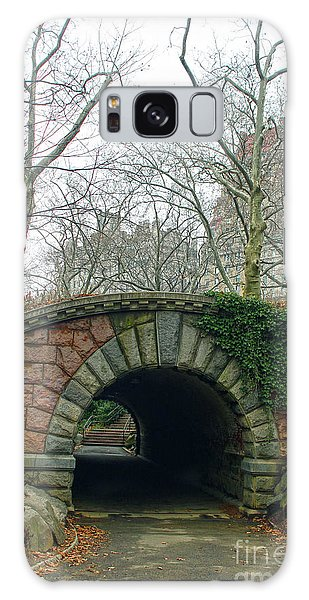Tunnel On Pathway Galaxy Case by Sandy Moulder