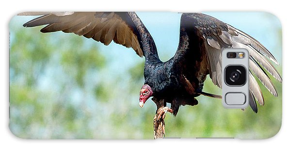 Turkey Vulture Galaxy Case