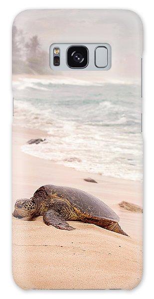 Turtle Beach Galaxy Case by Heather Applegate