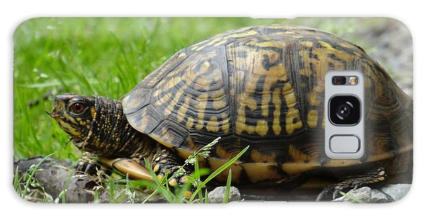 Turtle Crossing Galaxy Case