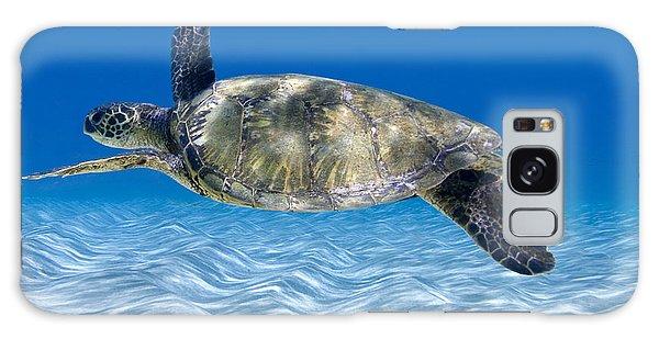 Turtle Galaxy Case - Turtle Flight -  Part 2 Of 3  by Sean Davey