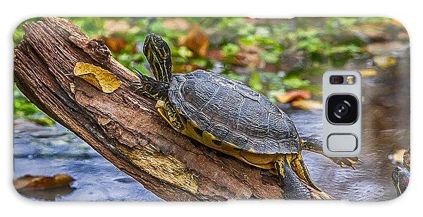 Turtle Yoga Galaxy Case