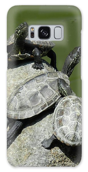Turtles At A Temple In Narita, Japan Galaxy Case
