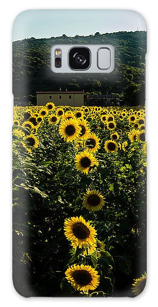 Tuscany - Sunflowers At Sunset Galaxy Case