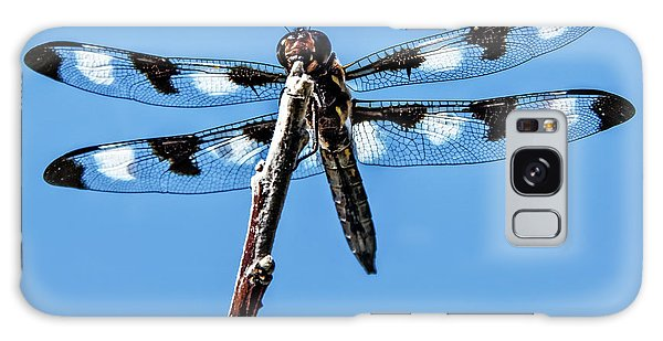 Haybale Galaxy Case - Twelve-spotted Skimmer by Robert Bales