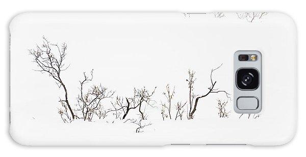 Twigs In Snow Galaxy Case