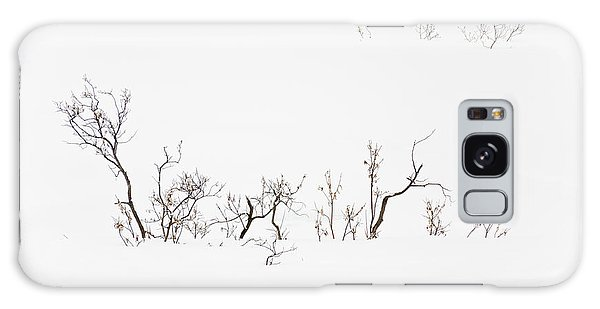Twigs In Snow Galaxy Case