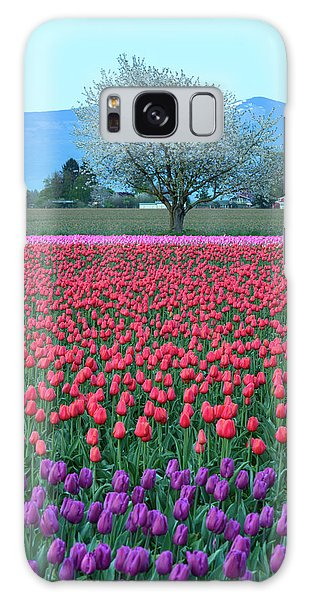 Twilight In Skagit Valley Galaxy Case