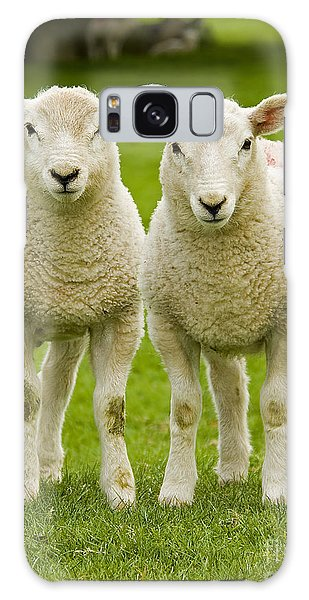 Sheep Galaxy Case - Twin Lambs by Meirion Matthias