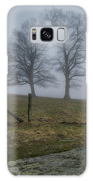 Twin Trees Late Fall Foggy Morning Galaxy Case