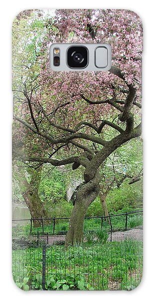 Twisted Cherry Tree In Central Park Galaxy Case by Margaret Bobb