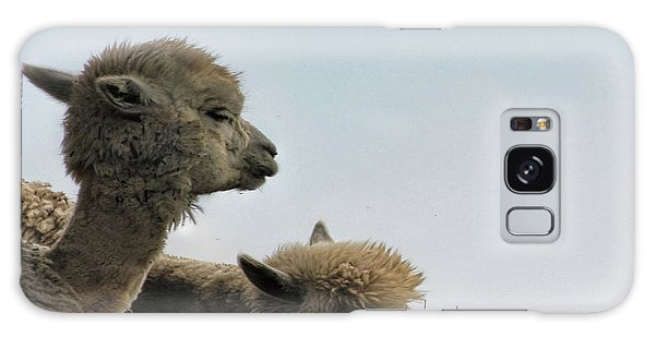 Two Alpaca Galaxy Case by Pat Cook