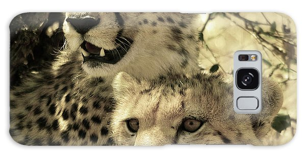 Two Cheetahs Galaxy Case