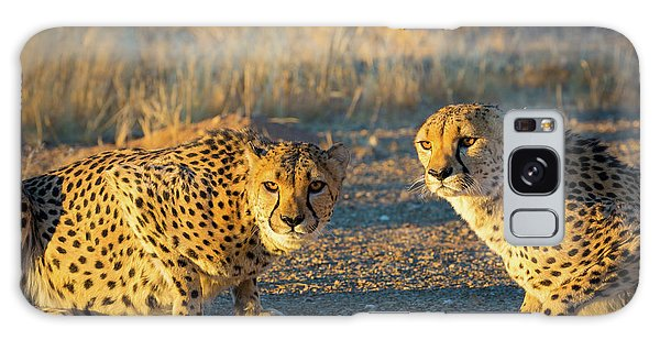Two Cheetahs Galaxy Case by Inge Johnsson