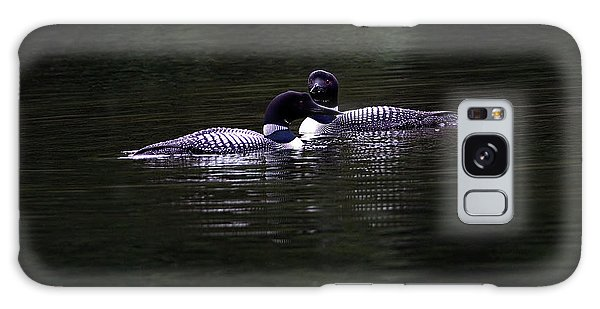 Two Common Loons At Sunset Galaxy Case