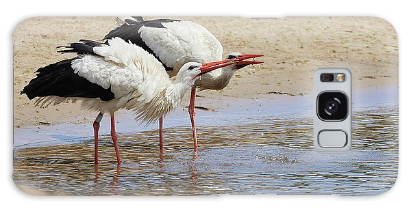 Two Drinking White Storks Galaxy Case