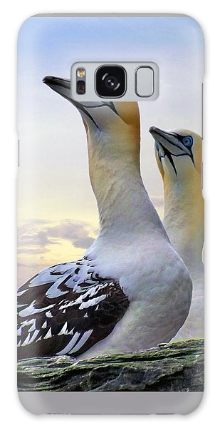 Two Gannets Galaxy Case