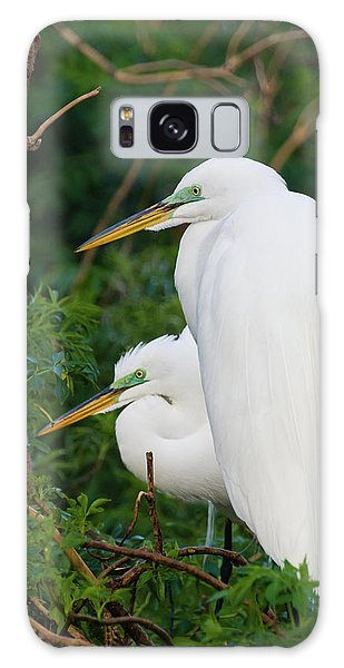 Two Great Egrets Galaxy Case