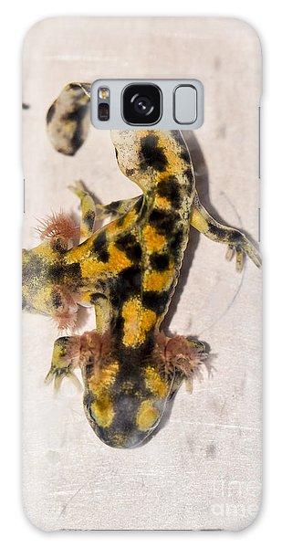 Two-headed Near Eastern Fire Salamande Galaxy Case