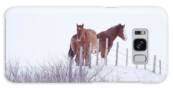 Two Horses In The Snow Galaxy Case