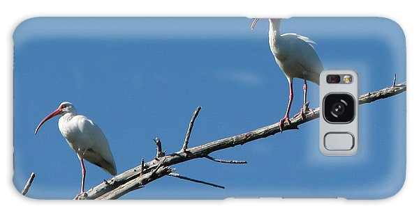 Two Ibis On Perch Galaxy Case