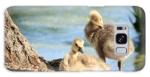 Two Little Goslings Galaxy Case