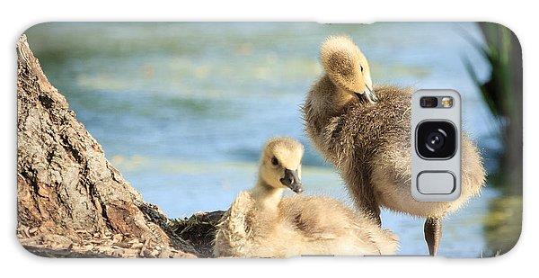 Two Little Goslings Galaxy Case by Joni Eskridge