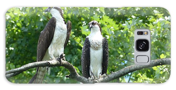 Two On A Limb - Osprey Galaxy Case by Donald C Morgan