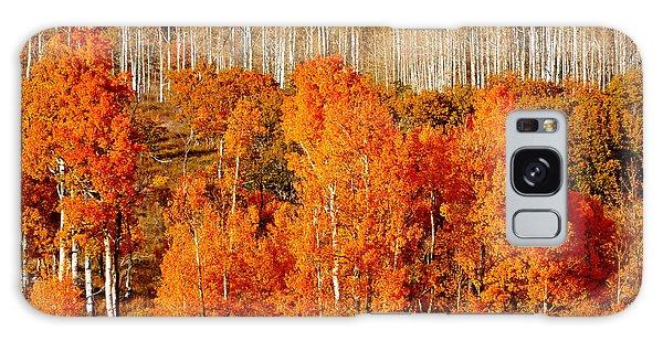 Two Rows Of Aspen Galaxy Case by Marcia Socolik