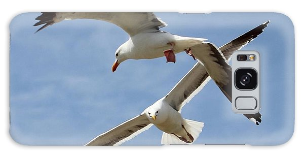 Two Seagulls Almost Collide  Galaxy Case