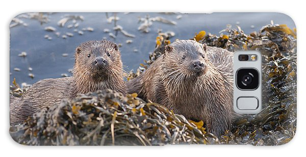Two Young European Otters Galaxy Case