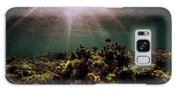 Underwater Sunset Galaxy Case