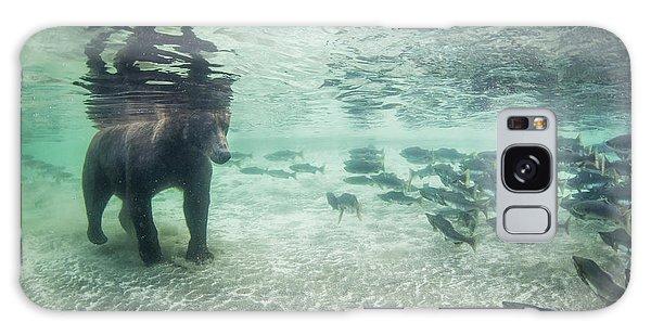 Grizzly Bears Galaxy Case - Underwater View Of Coastal Brown Bear by Paul Souders